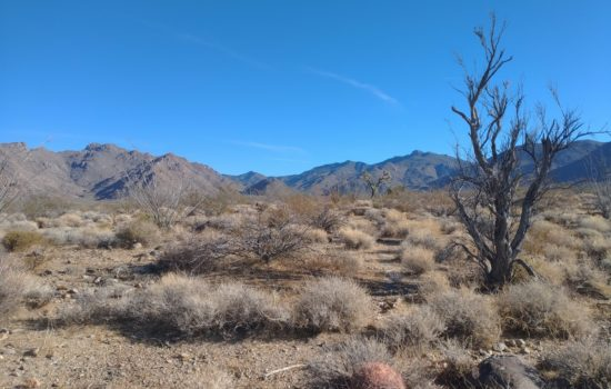 1.02-acre Lot For Sale in Yucca, Arizona! Breathtaking Views Await!